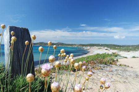Rena Majore Beach